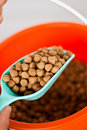 Animal feed Stock Photography