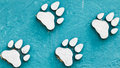 Animal foot print Royalty Free Stock Image