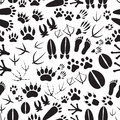 Animal footprints black and white seamless pattern Royalty Free Stock Photo