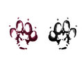 Animal footprints on white