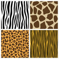 Animal Fur Seamless Patterns Royalty Free Stock Photo