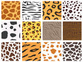 Animal fur texture nature abstract wildlife background wild furry hair seamless pattern natural material africa striped Royalty Free Stock Photo