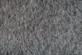 Animal Gray Fur Texture Stock Image