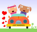 Animal marriage a newly wed cat and dog riding a car Stock Photo