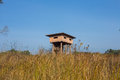 Animal observe tower wooden observation in the wood thailand Stock Photos