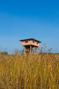 Animal observe tower wooden observation in the wood thailand Royalty Free Stock Photo