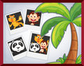 Animal photoframe illustration of with palm tree Royalty Free Stock Images
