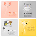 Animal portrait collection with cats