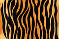 Animal print pattern abstract painted with glossy golden and black acrylic paint Stock Photo