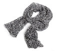 Animal print Scarf isolated on white background Stock Image