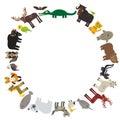 Animal round frame, bison bat manatee fox elk horse wolf fur seal Polar bear Mountain goat raccoon Eagle skunk parakeet Jaguar nar