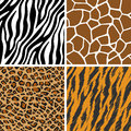 Animal Set - Giraffe, Leopard, Tiger, Zebra Seamless Pattern Royalty Free Stock Photo