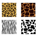 Animal skin Royalty Free Stock Photography