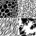 Animal skin seamless patterns Royalty Free Stock Photo