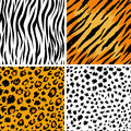 Animal skins Royalty Free Stock Images