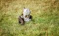 Animal Skull Found On The Gras...