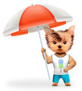 Animal in t-shirt and shorts holding umbrella