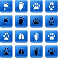 Animal track buttons Royalty Free Stock Image