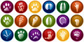 Animal tracks buttons Stock Images