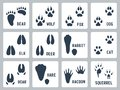 Animal Tracks Vector Icons