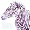 Animal watercolor illustration decorative Royalty Free Stock Photo