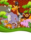 Animal wildlife cartoon illustration of cute Royalty Free Stock Images