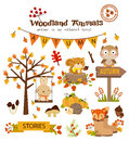 Animal Woodland Autumn Vector ...