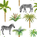 Animal zebra palm trees cactus seamless white background Royalty Free Stock Photo