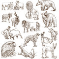 Animals around the world set no full sized drawings Stock Image
