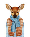 Animals as a human. Fawn in down vest, sweater and scarf.
