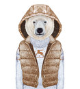 Animals as a human. Polar Bear in down vest and sweater.