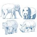 Animals drawings set