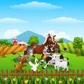 Animals farm playing at hills