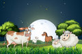 Animals at the forest strolling in the middle of the night illustration Royalty Free Stock Photo
