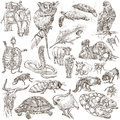 Animals - Freehand sketching, pack Royalty Free Stock Photo