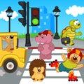 Animals Go Across Crosswalk