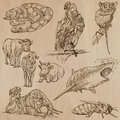 Animals - hand drawn vector pack Royalty Free Stock Photo