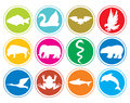 Animals icons buttons animal set animal collection Stock Image
