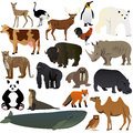 Animals illustration of various with white background Royalty Free Stock Images