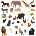 Animals illustration of various with white background Stock Photography