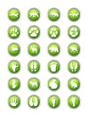 Animals and its traces icons a icon set with a wild Royalty Free Stock Photo