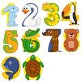 Animals like numbers