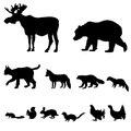 Animals living in european forest vector set of silhouette isolated on white background Stock Image