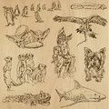 Animals pack around the world set no collection of an hand drawn illustrations description each drawing comprise of two layer of Stock Photos