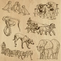Animals pack around the world set no collection of an hand drawn illustrations description each drawing comprise of two layer of Royalty Free Stock Images