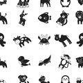 Animals pattern icons in black style. Big collection animals vector symbol stock illustration