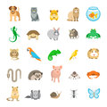 Animals pets vector flat colorful icons set  on white Royalty Free Stock Photo
