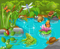 Animals in the pond Royalty Free Stock Photo