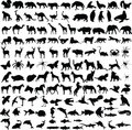 Animals silhouettes collection Royalty Free Stock Photo