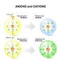Anions and cations for example sodium and chlorine atoms.